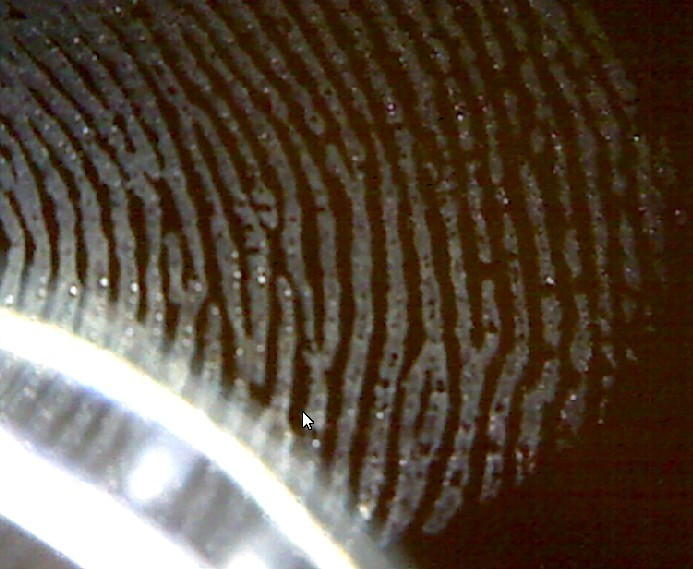 finger-print-view