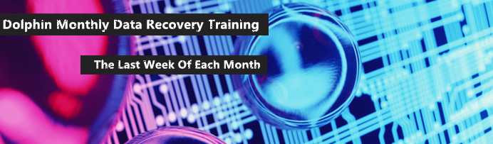 dolphin-monthly-data-recovery-training
