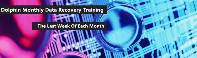 dolphin-mensual de recuperación de datos de entrenamiento