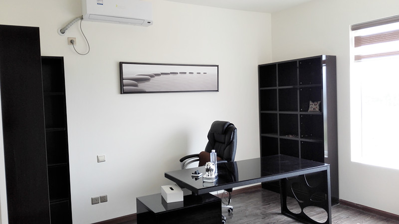 Dolphin-CEO-Office