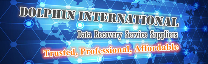 Dolphin-International-Data-Recovery-Service-Partners-Inner